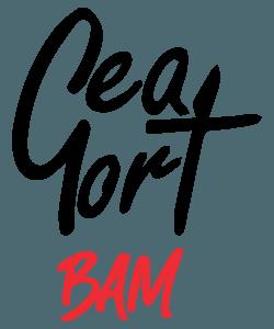 logo-gea-gort-01